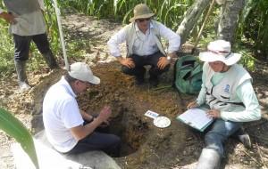 Subdirector de Agrología del IGAC y comisión de edafólogos durante exploración de campo en el municipio de Lorica - Corregimiento de El Carito.